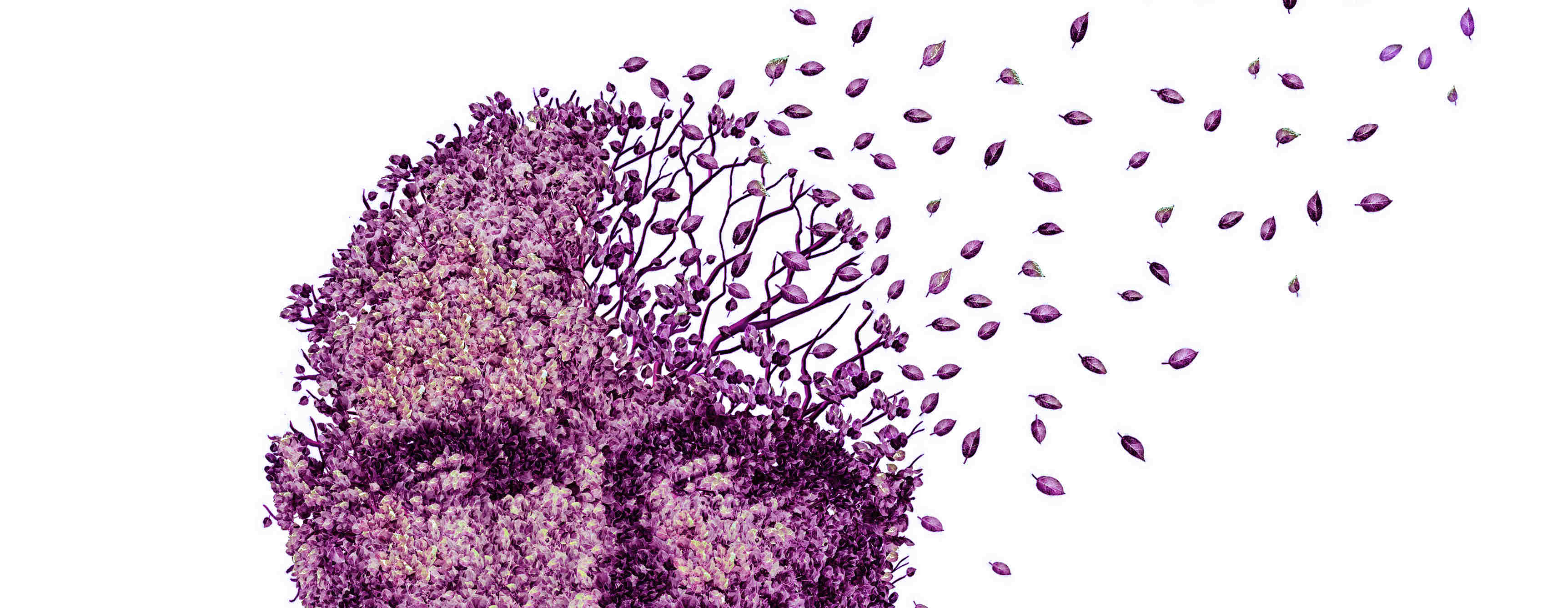 Understanding and respecting the person with dementia
